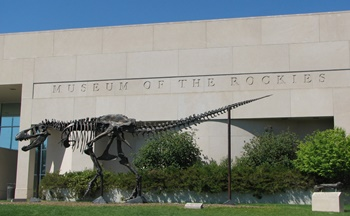 """""""Big Mike"""" in front of the Museum of the Rockies, Bozeman, MT."""