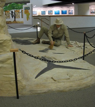 Recreation of George F. Sternberg and the fish-within-a-fish fossil. Sternberg Museum of Natural History, Hays, KS.