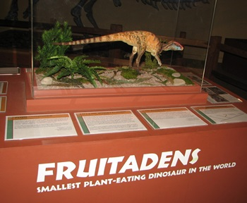 Fruitadens display. Dinosaur Journey Museum of Western Colorado, Fruita, CO.