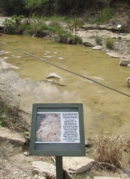 Sign indicating Sauropod tracks in Paluxy River. Dinosaur Valley State Park, Glen Rose, TX.