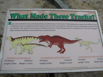 Who Made These Tracks? Sign at Dinosaur Ridge, Morrison, CO.