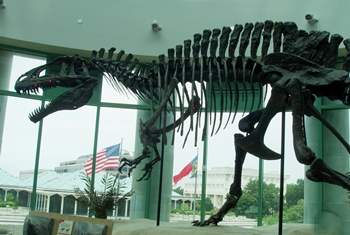 Menacing Acrocanthosaurus display. North Carolina Museum of Natural History, Raleigh, NC.
