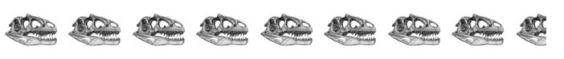 8.5 skulls