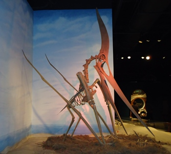 Terrific Pterandon display. McWane Science Center, Birmingham, AL.