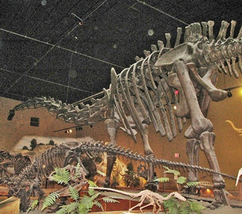 """Jimbo"" the Supersaurus. Wyoming Dinosaur Center, Thermopolis, WY."