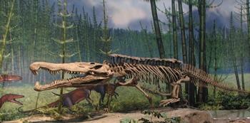 Late Triassic phytosaur Redondasaurus. Carnegie Museum of Natural History, Pittsburgh, PA.