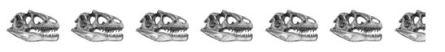 6.5 skulls
