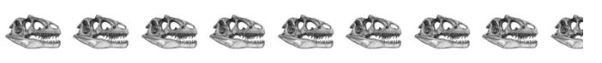 8-5-skulls