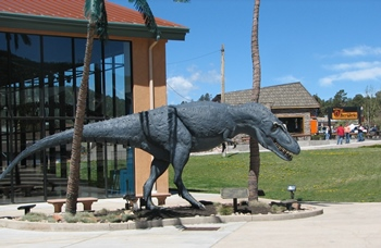 Life-size model of Daspletosaurus outside the Rocky Mountain Dinosaur Resource Center, Woodland Park, CO.