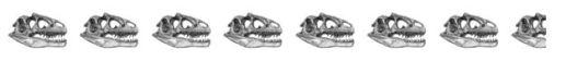 7-5-skulls