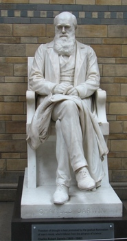 Statue of Charles Darwin, Natural History Museum, London, England.