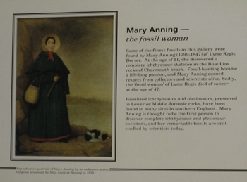 Placard describing Mary Anning in the Natural History Museum, London, England.