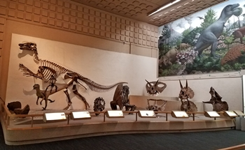 Edmontosaurus and other dinosaurs at one end of the Great Hall of Dinosaurs, Yale Peabody Museum, New Haven, CT.