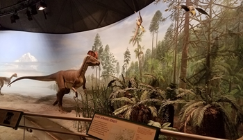 Diorama featuring Dilophosaurus at Dinosaur State Park, Rocky Hill, CT.