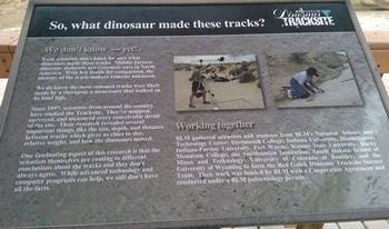 One of the many educational signs at the Red Gulch Dinosaur Tracksite, near Shell, WY.