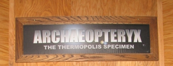 """The """"Thermopolis Specimen"""" of Archaeopteryx is considered one of the most complete in the world. Wyoming Dinosaur Center, Thermopolis, WY."""