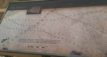Sign showing the pathways of the tracks at Red Gulch Dinosaur Tracksite, near Shell, WY.