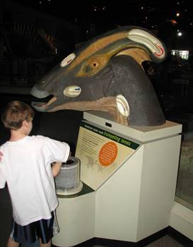 Wonderful hands-on exhibit about the sounds a Parasaurolophus could make at The Field Museum, Chicago, IL.