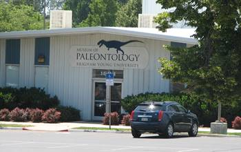 The B.Y.U. Museum of Paleontology, Provo, UT.