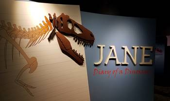 "Entrance to the fantastic ""Jane"" exhibit at the Burpee Museum of Natural History, Rockford, IL."