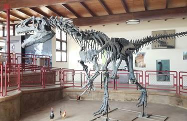 Allosaurus display, Cleveland-Lloyd Dinosaur Quarry at Jurassic National Monument. Near Cleveland, UT.
